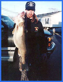 Record Walleye